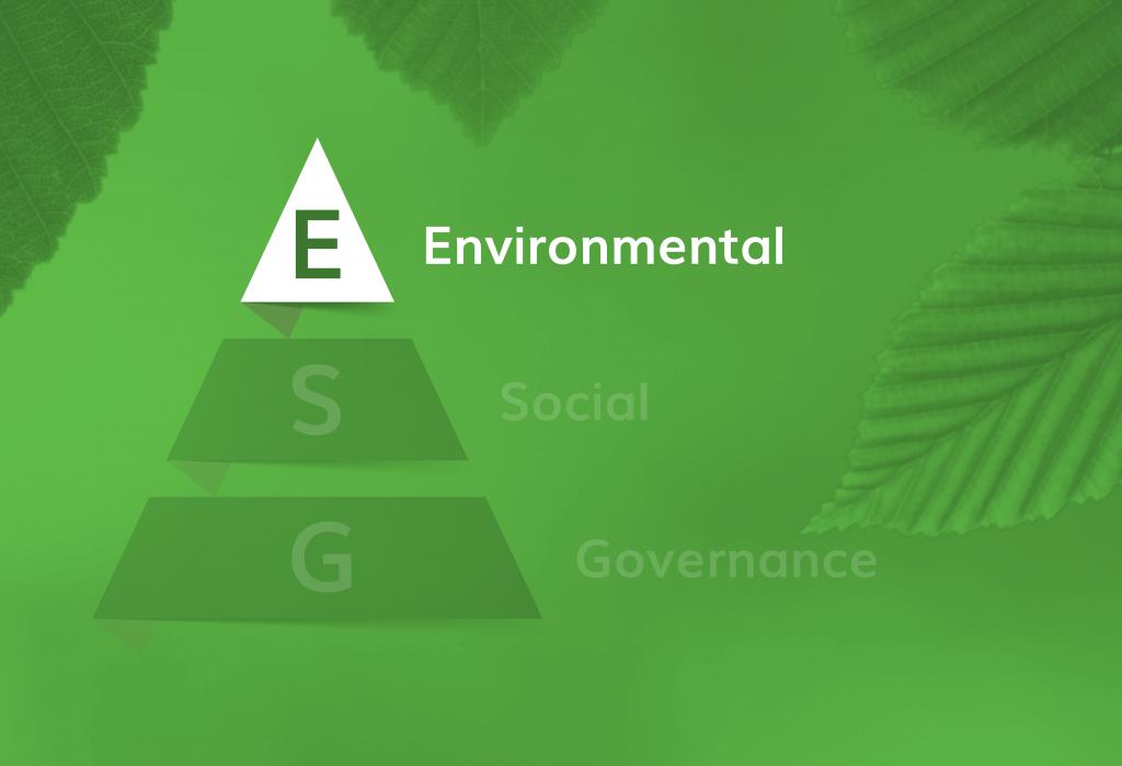 ESG Infograph E-01